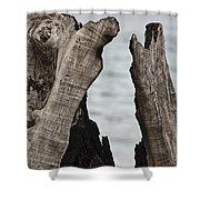 Stumped V3 Shower Curtain
