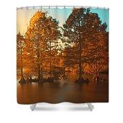 Stumpy Sunset Shower Curtain
