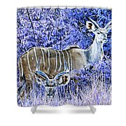 Styled Environment- Modern Kudus V3 Shower Curtain