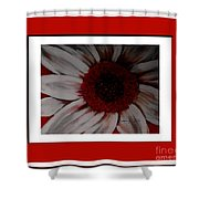 Stylized Daisy With Red Border Shower Curtain