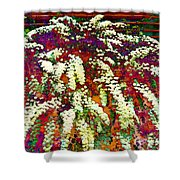 Stylized Spirea - Flowering Plant - Gardener Shower Curtain