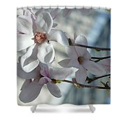 Sublime Magnolia Shower Curtain
