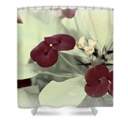 Subtle Beauty Shower Curtain