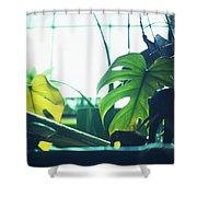 Suburban Safari 4 Western Terrace Shower Curtain