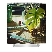 Suburban Safari Original Shower Curtain