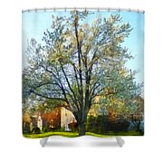 Suburbs - Late Afternoon In Spring Shower Curtain