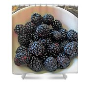 Succulent Blackberries  Shower Curtain
