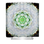 Succulent Mandala Shower Curtain