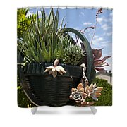 Succulents In A Planter Shower Curtain