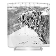 Such A Pretty Girl Shower Curtain by Peggy Collins