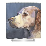 Such A Spaniel Shower Curtain