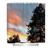 Suddenly This Summer Shower Curtain
