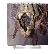 Sue The Tyrannosaurus Rex Shower Curtain