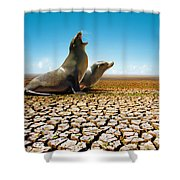 Suffering Seals Shower Curtain