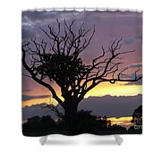 Suffolk Sunset Recalled Shower Curtain