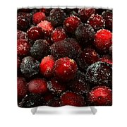 Sugared Cranberries Shower Curtain