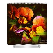 Sultry Nights - Flower Photography Shower Curtain