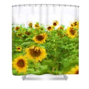 Sultry Sunflowers Shower Curtain