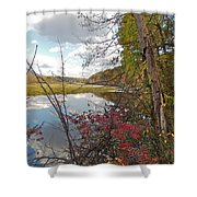 Sumac And Clouds Shower Curtain