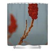 Sumac Red Shower Curtain