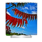Sumac Red Shower Curtain