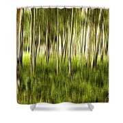 Summer Aspens Shower Curtain