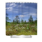 Summer At The Bog... Shower Curtain