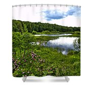 Summer At The Green Bridge Shower Curtain