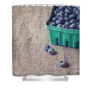 Summer Blueberries Shower Curtain