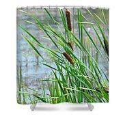 Summer Cattails In The Breeze Shower Curtain