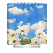 Summer Daisies Shower Curtain by Amanda Elwell