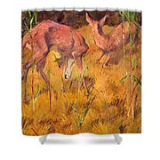 Summer Deer Shower Curtain