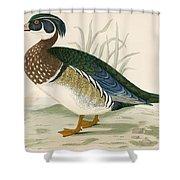 Summer Duck Shower Curtain
