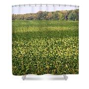 Summer Farm Field Shower Curtain