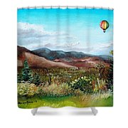Summer Flight 4 Shower Curtain