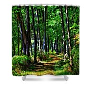 Summer Forest In Ohio Shower Curtain