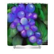Summer Grape Shower Curtain
