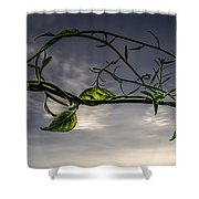 Summer Green Shower Curtain