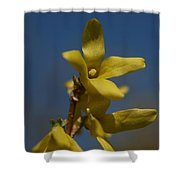 Summer Highlight Shower Curtain