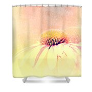 Summer In A Day Shower Curtain