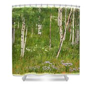 Summer In The Colorado Mountains Shower Curtain