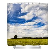 Summer Landscape With Cornfield Blue Sky And Clouds On A Warm Summer Day Shower Curtain