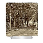 Summer Lane Sepia Shower Curtain