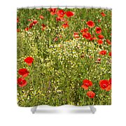Summer Meadow Background Shower Curtain