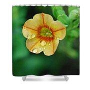 Summer Mini Bell Shower Curtain
