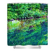 Summer Monet Reflections Shower Curtain