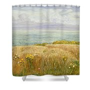 Summer On The Cliffs Shower Curtain