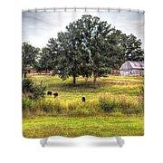 Summer On The Farm Shower Curtain