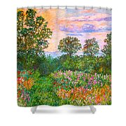 Summer Path At Rock Castle Gorge Shower Curtain