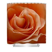 Summer Peach Shower Curtain